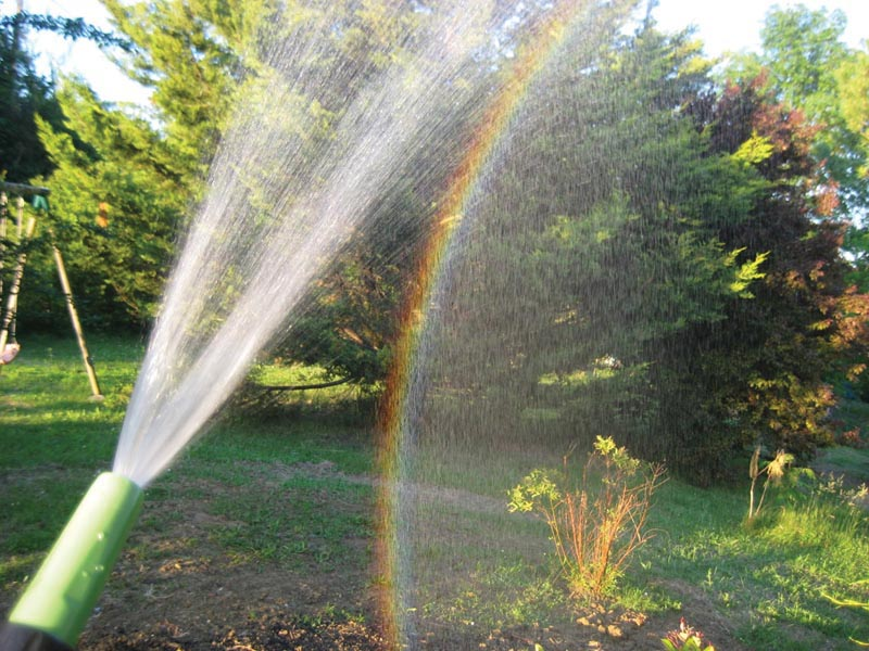 Figure 2. A rainbow from a water sprinkler. Photo by Stephanie Gimenes.