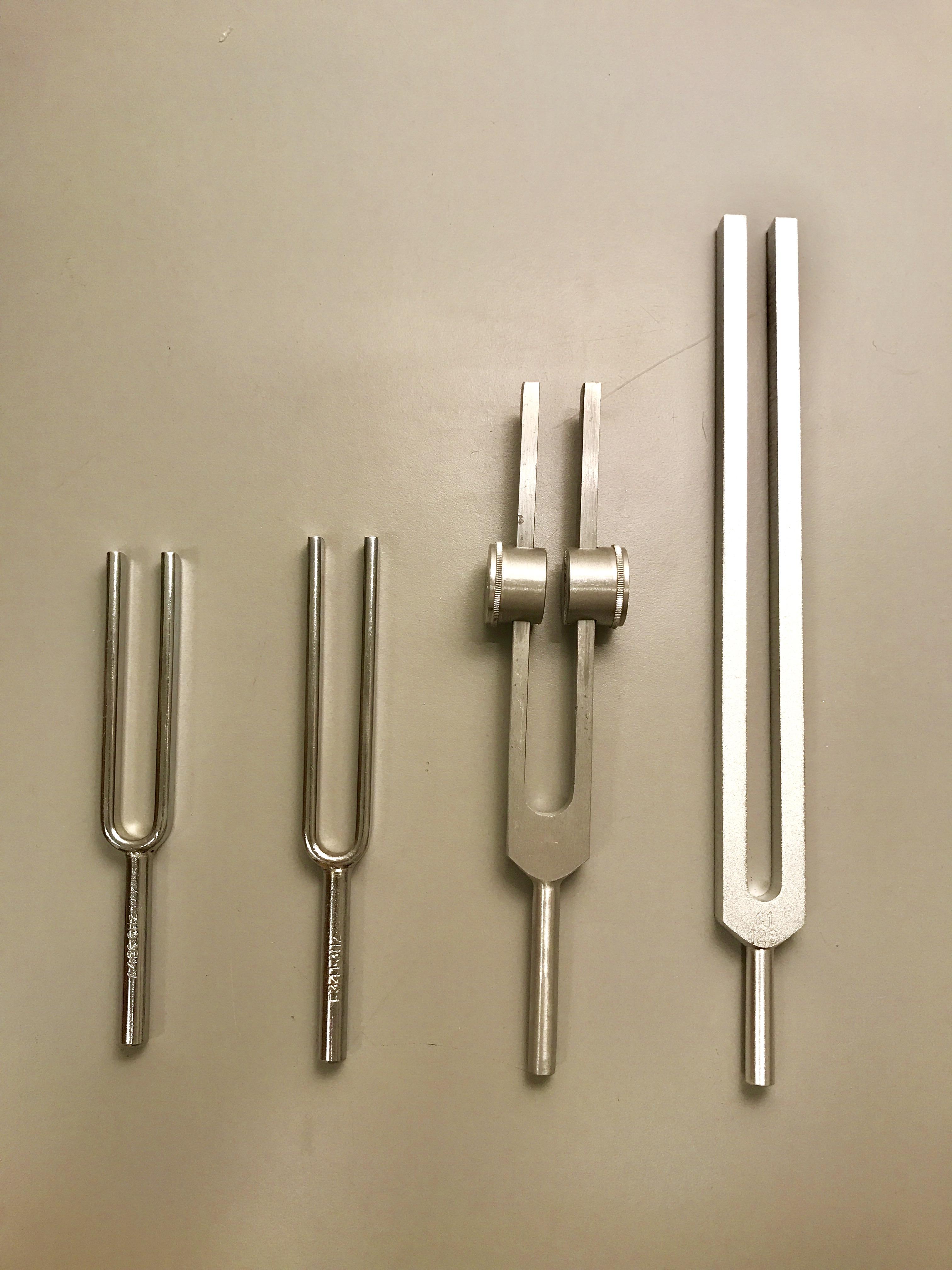 Tuning fork workshop