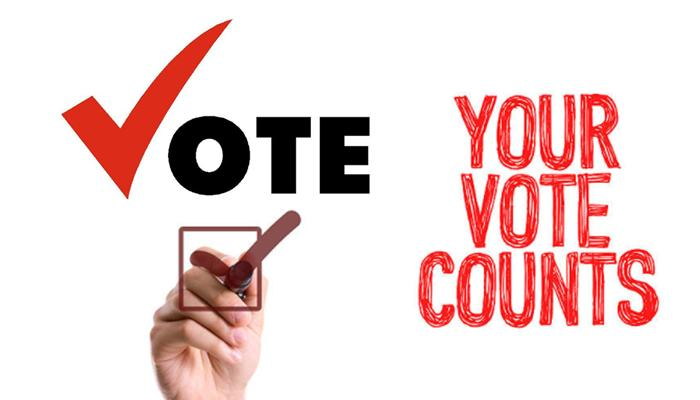 Vote for National Council